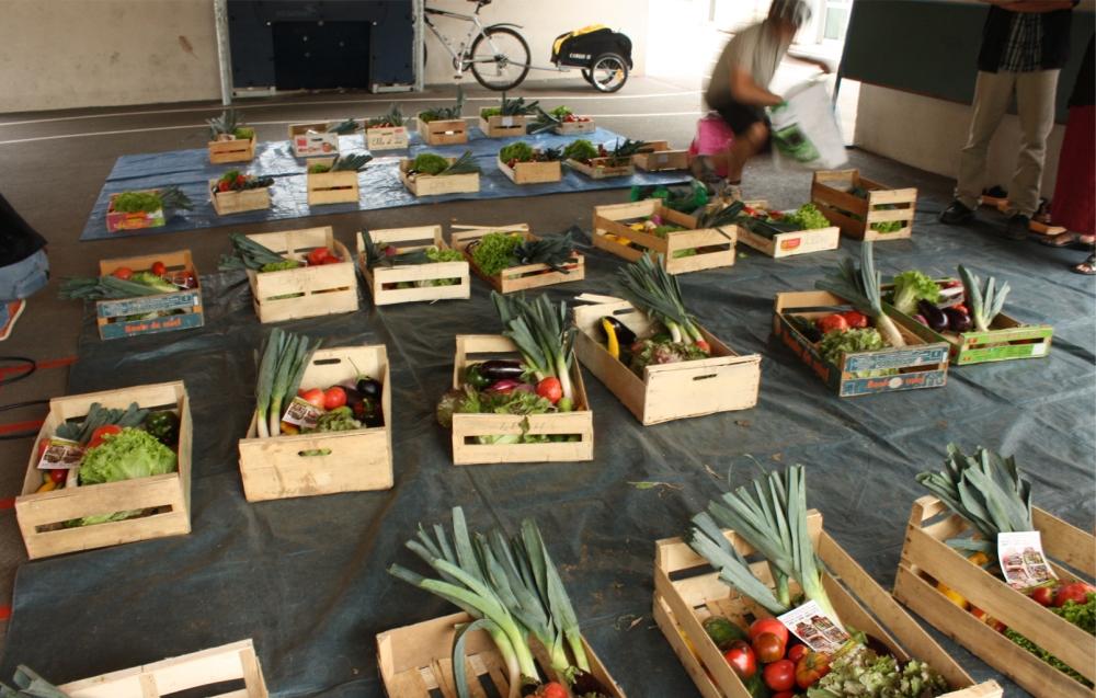 Récolte n°01 - La ferme dans le vent a besoin de trésorerie (3/5)